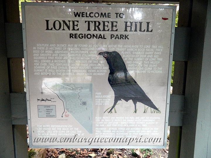LoneTreeHill_06