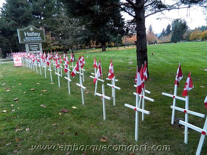 Este cemitério próximo de casa está cheio de homenagens ao Veteranos de Guerra.