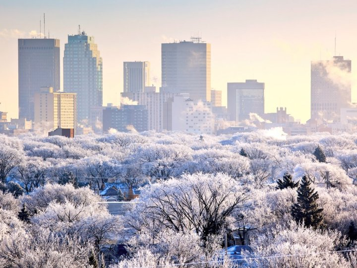 9 Winnipeg