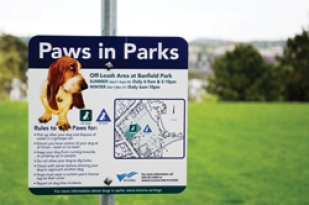 paws-in-park
