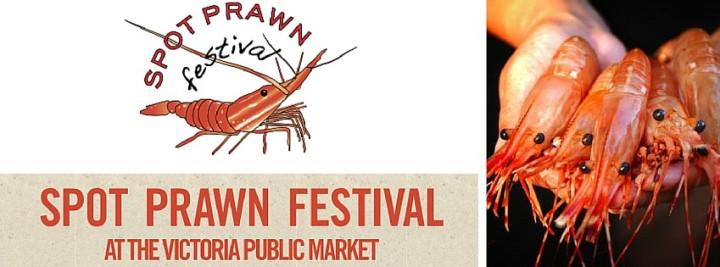 Spot-Prawn-Festival