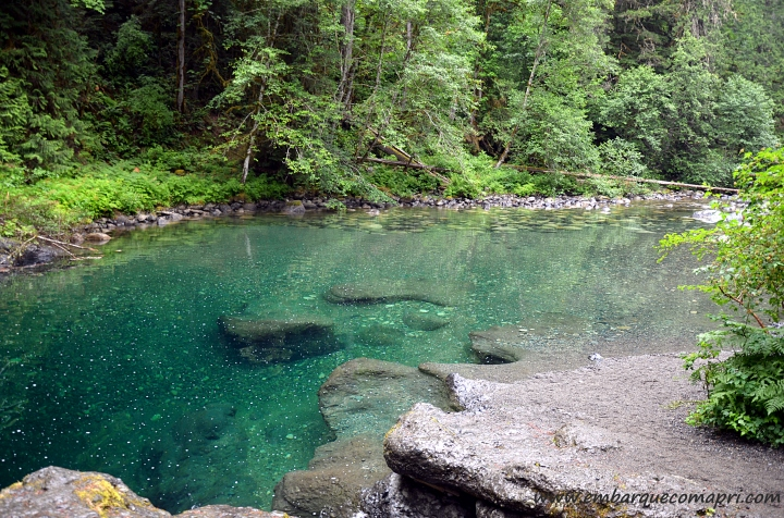 englishman-river-falls4