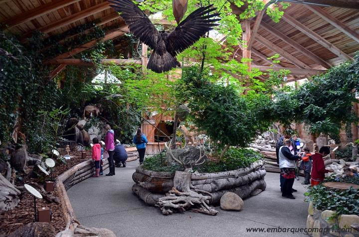 north-island-wildlife-recovery-centre